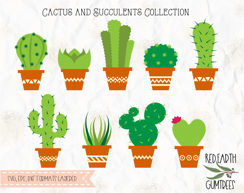 Cactus In Pot Collection In Svg Eps Pdf Dxf Png